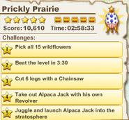 Prickly Prairie2
