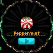 Peppermint Slider