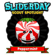 Spotlight Peppermint