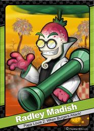 076 Radley Madish