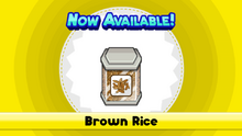Brown Rice TMTG