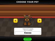 Pet 01