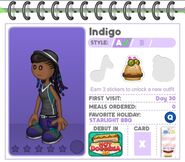 Indigo Profile