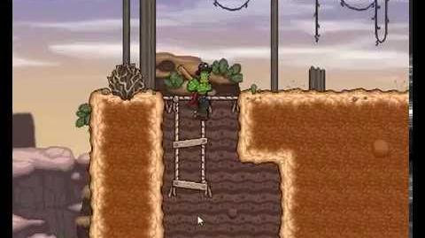 Cactus Mccoy -Level 1