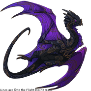 Ninjoy the Nocturne