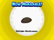 S---akemushrooms