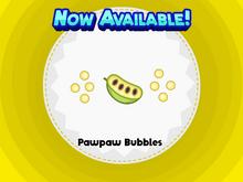 Pawpaw Bubble