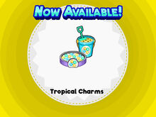 Tropical Charms Scooperia