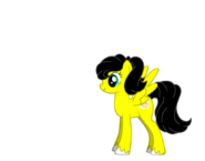 Akari pony