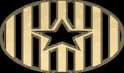 Star Crust