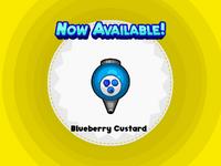 Blueberry Custard- DTG!