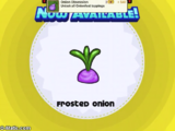 Frosted Onion