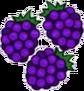 Blackberries Transparent