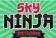 Sky Ninja Returns Poster