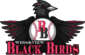 Whiskview Black Birds logo