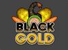 PWTG! Black Gold logo