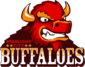 Starlight City Buffaloes logo