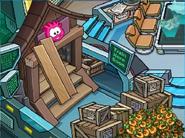 Puffle Traning Hall