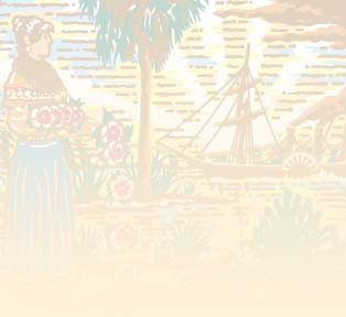File:Florida Seal background.jpg