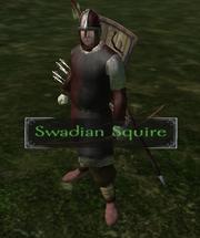 Swadian squire