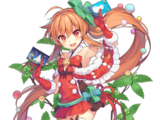 Chloranthus (Christmas)