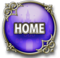 Interface home icon