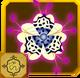 Ryuu Set§AF5 100%