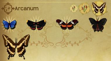Arcanum Set§Flutterpedia