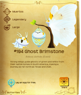 Ghost Brimstone§Flutterpedia