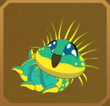 Obi Island Birdwing§Caterpillar
