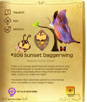 Sunset Daggerwing§Flutterpedia UpgradedAlt