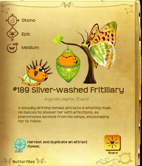 Silver-washed Fritillary§Flutterpedia