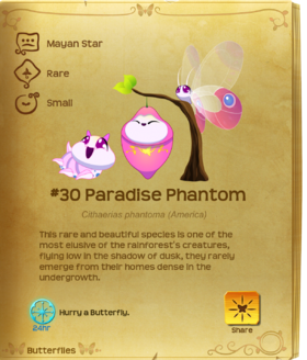 Paradise Phantom§Flutterpedia