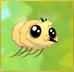 Bee Fly§Teen