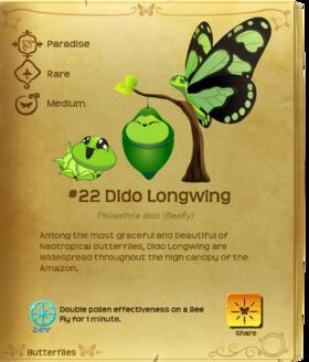 Dido Longwing§Flutterpedia
