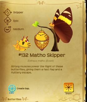 Matho Skipper§Flutterpedia