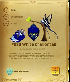 White Dragontail§Flutterpedia
