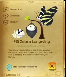 Zebra Longwing§Flutterpedia