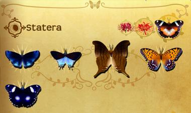 Statera Set§Flutterpedia