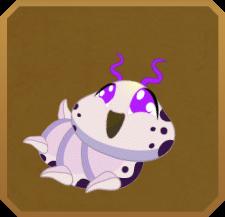 Queen Purple Tip§Caterpillar