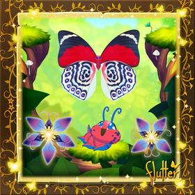 Claudina's Agrias§Facebook