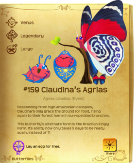 Claudina's Agrias§Flutterpedia Upgraded