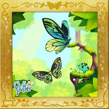 Birdwing Set§Facebook2