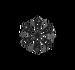 Salji Set§Icon