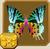 Sunset Moth§Headericon