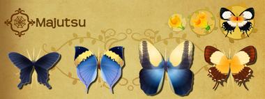 Majutsu Set§Flutterpedia