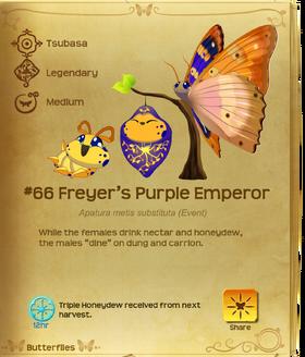 Freyer's Purple Emperor§Flutterpedia