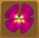 Rama-rama Set§AF 50%