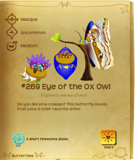 Eye of the Ox Owl§Flutterpedia