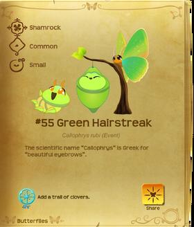 Green Hairstreak§Flutterpedia